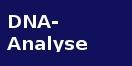 Cover - Die DNA-Analyse im Strafverfahrens- und Sicherheitspolizeirecht - Autorin Weiland (Ausschnitt)